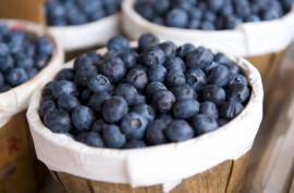 Jaké je hubnutí s borůvkovou dietou?