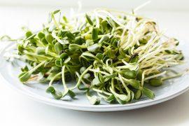 Zařazení zelených výhonků do redukčního jídelníčku