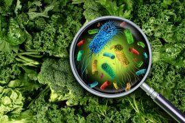 Způsoby, jak bezpečně zamezit nemocícm z potravin