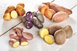 Jakým druhům brambor dát v redukční dietě přednost?