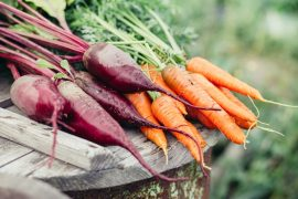 Kořenová zelenina jako lék s blahodárnými a afrodiziakálními účinky