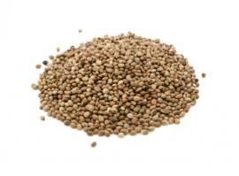 Semínka z konopí jak je neznáte