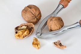 Vlašské ořechy - pro zdraví a štíhlou linii